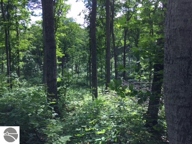 Property for sale at S Schomberg Road, Lake Leelanau,  MI 49653