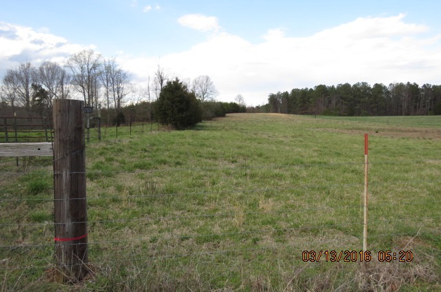 Chesnee Road, Green Creek, NC 28722