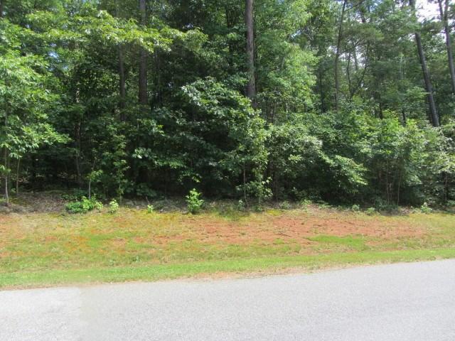 16 Moss Drive, Rutherfordton, NC 28139