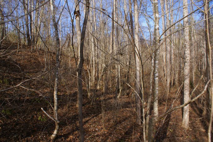 Lot 239 Clearwater Pkwy, Rutherfordton, NC 28139