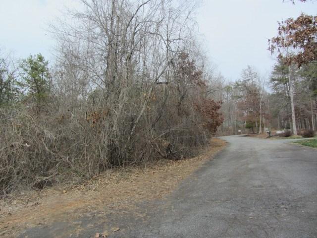00 Moss Drive, Rutherfordton, NC 28139