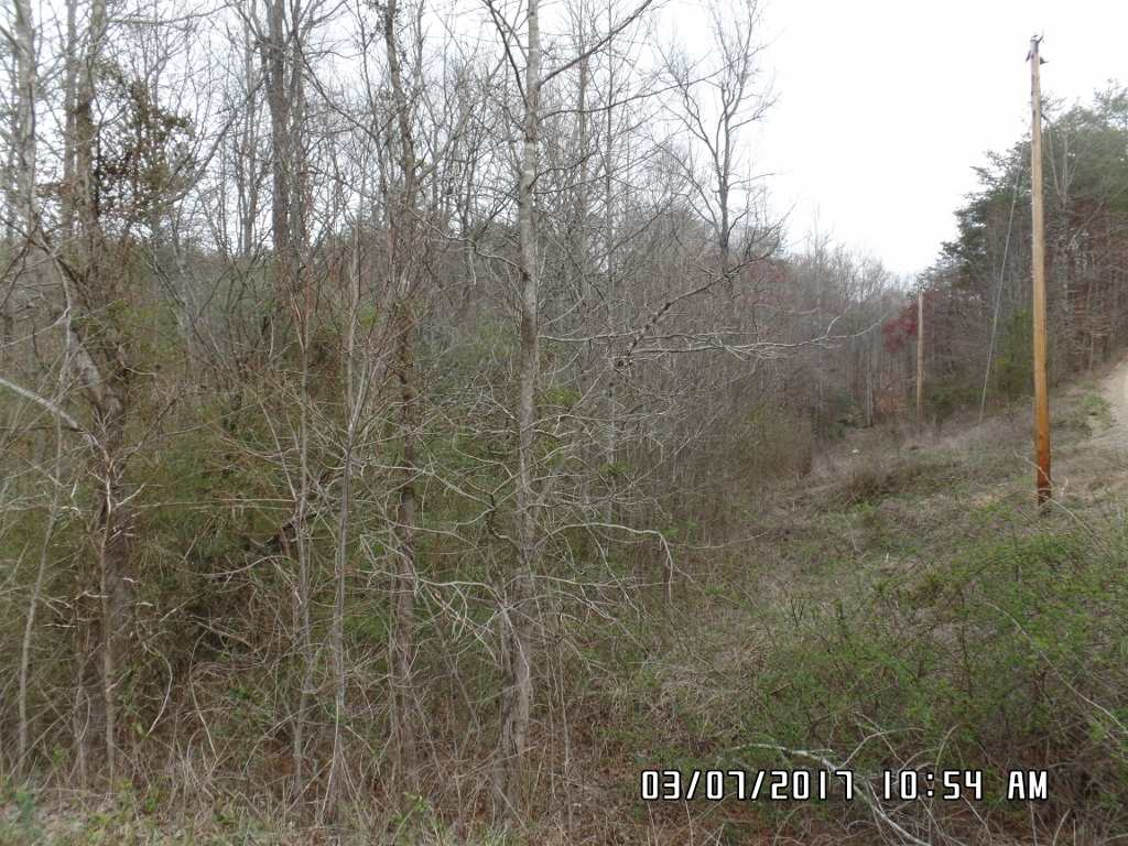 212 Deer Creek Rd, Casar, NC 28020