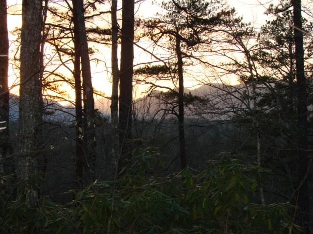50 Egret, Lake Lure, NC 28746