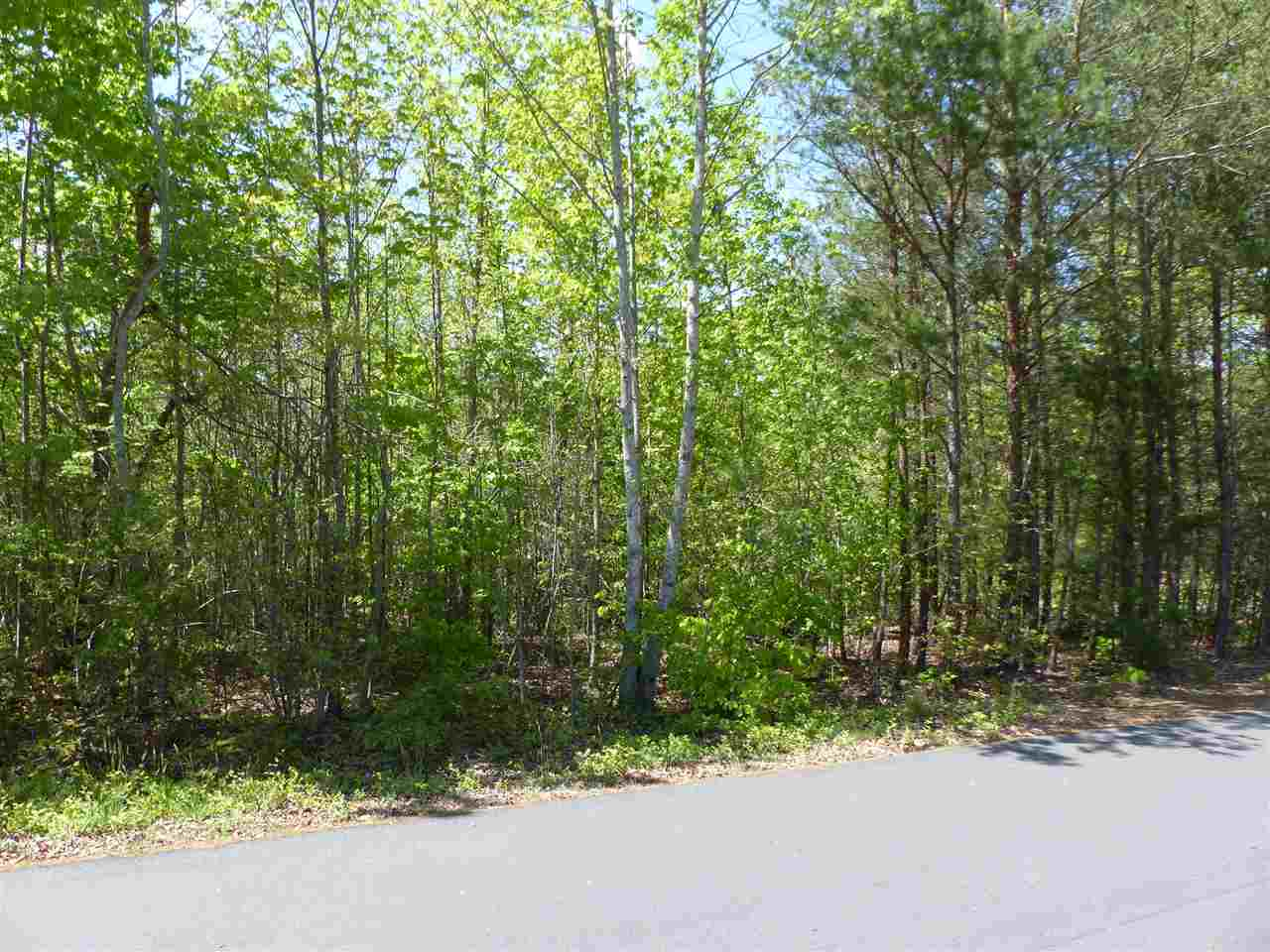 0 Dimsdale Drive, Rutherfordton, NC 28139