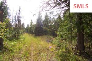 Potential gravel pit, 6ft to 57, 46+ acres, 5 acres in city limits, open meadow, few trees, city sewer and water available.