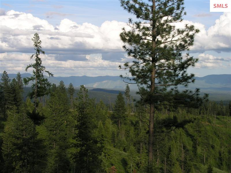 Land for Sale at NNA Hidden Valley Rd (South 140 acres) NNA Hidden Valley Rd (South 140 acres) Spirit Lake, Idaho 83804 United States