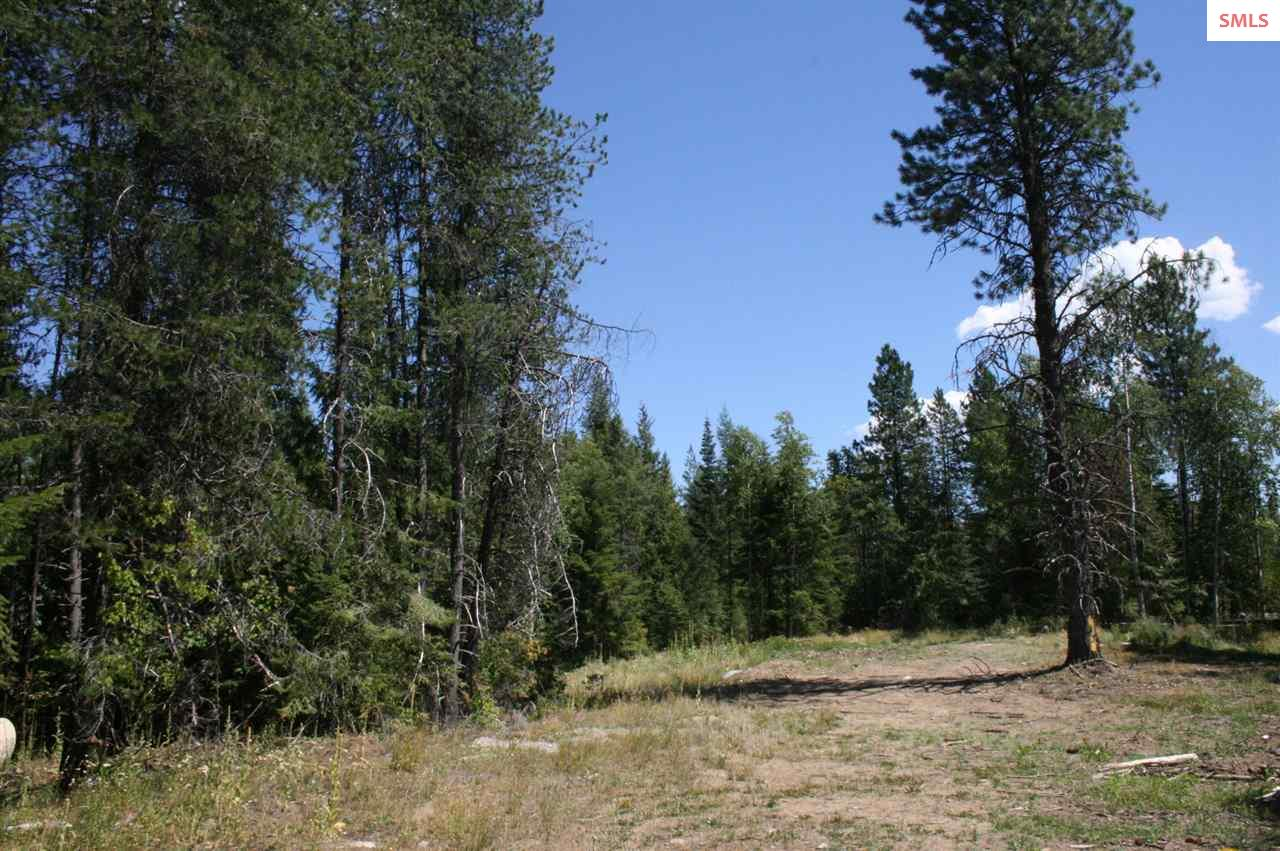 20 acres Samuels Rd, Sandpoint, ID 83864