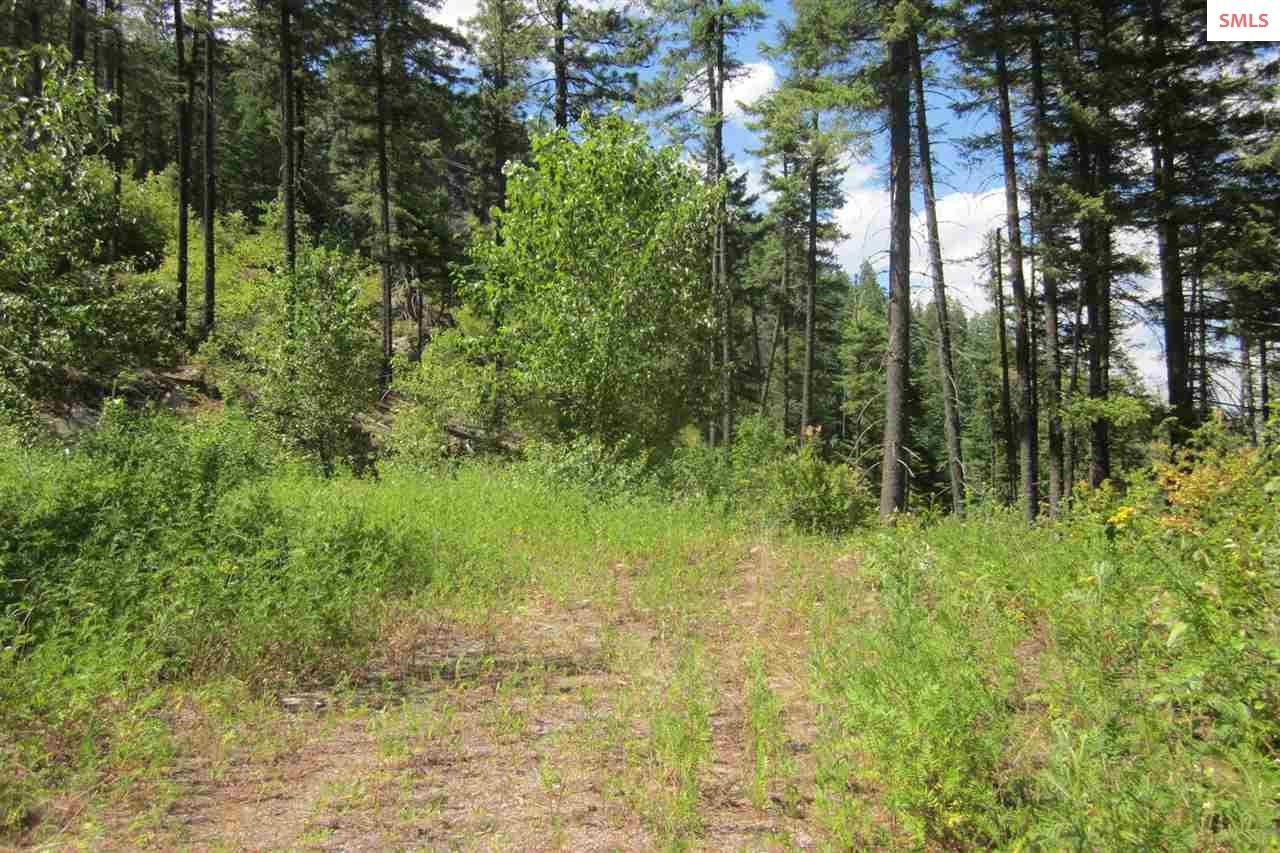 Lot 1C Summit Dr., Sandpoint, ID 83864