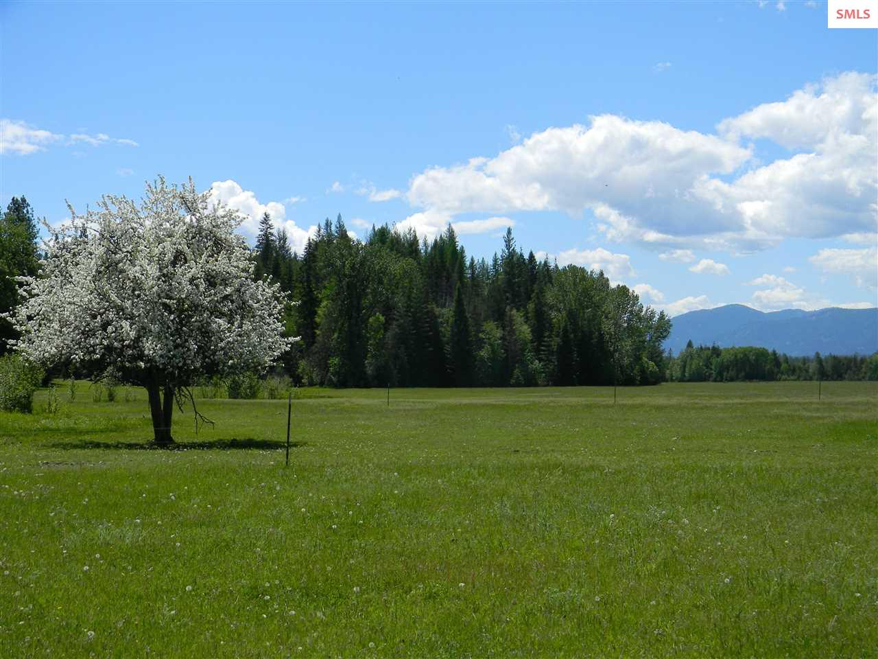 Land for Sale at 1768 Grouse Creek 1768 Grouse Creek Sandpoint, Idaho 83862 United States