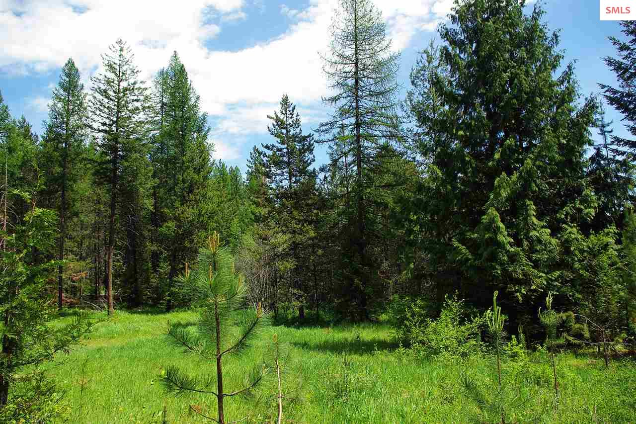 NAA Forest Knolls Dr, Sandpoint, ID 83864