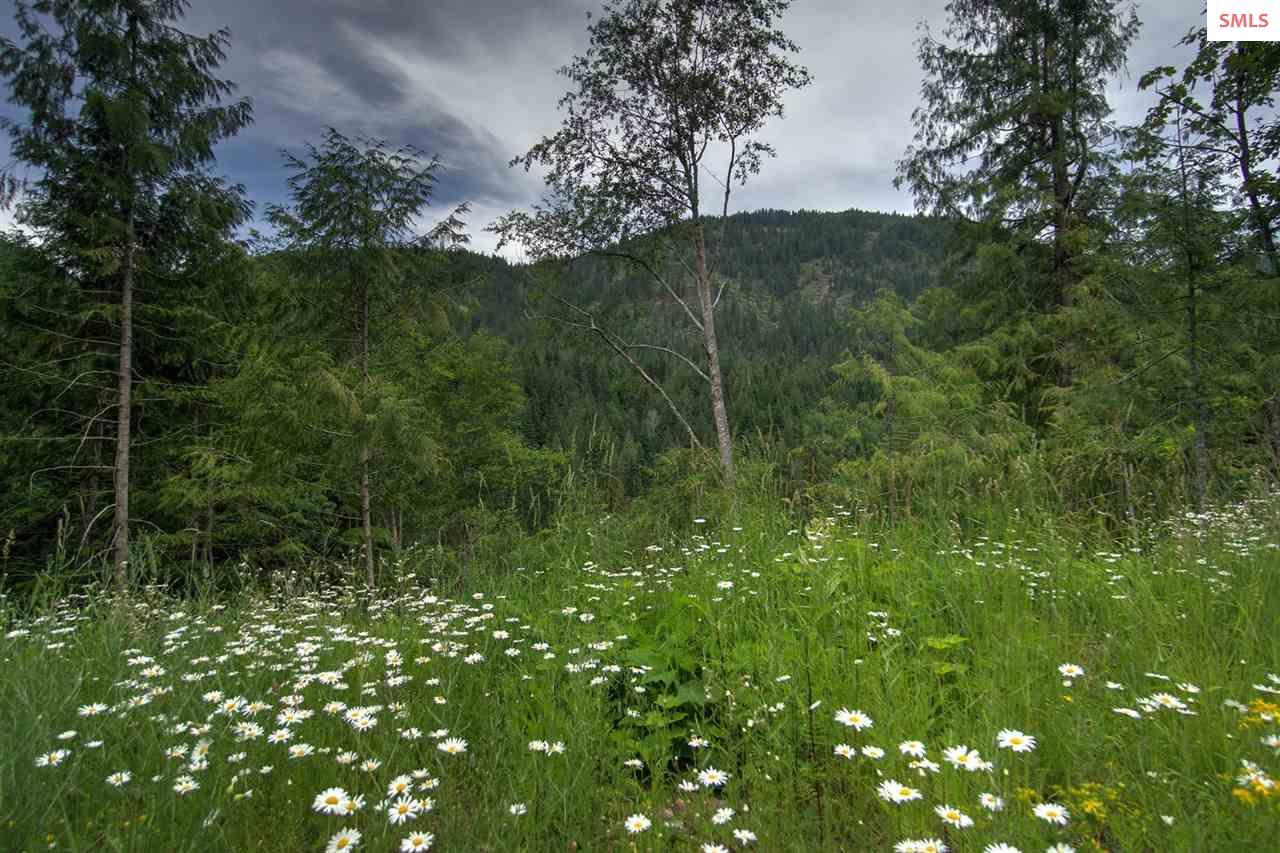 NNA Trestle Creek, Hope, ID 83836