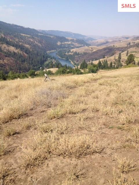 Land for Sale at NKA River Pointe NKA River Pointe Orofino, Idaho 83541 United States