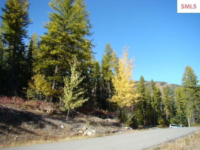 Development Opportunity at Schweitzer Mountain Resort. 1.16 Acre Building Site, generally flat with Panoramic Views of the Mountains and the Ski Hill. Located a short distance to the village. Call for a private showing.