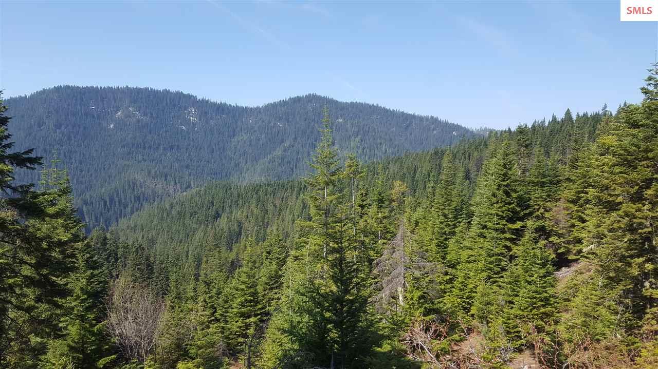 Land for Sale at NKA Cougar Mountain View NKA Cougar Mountain View Kingston, Idaho 83839 United States