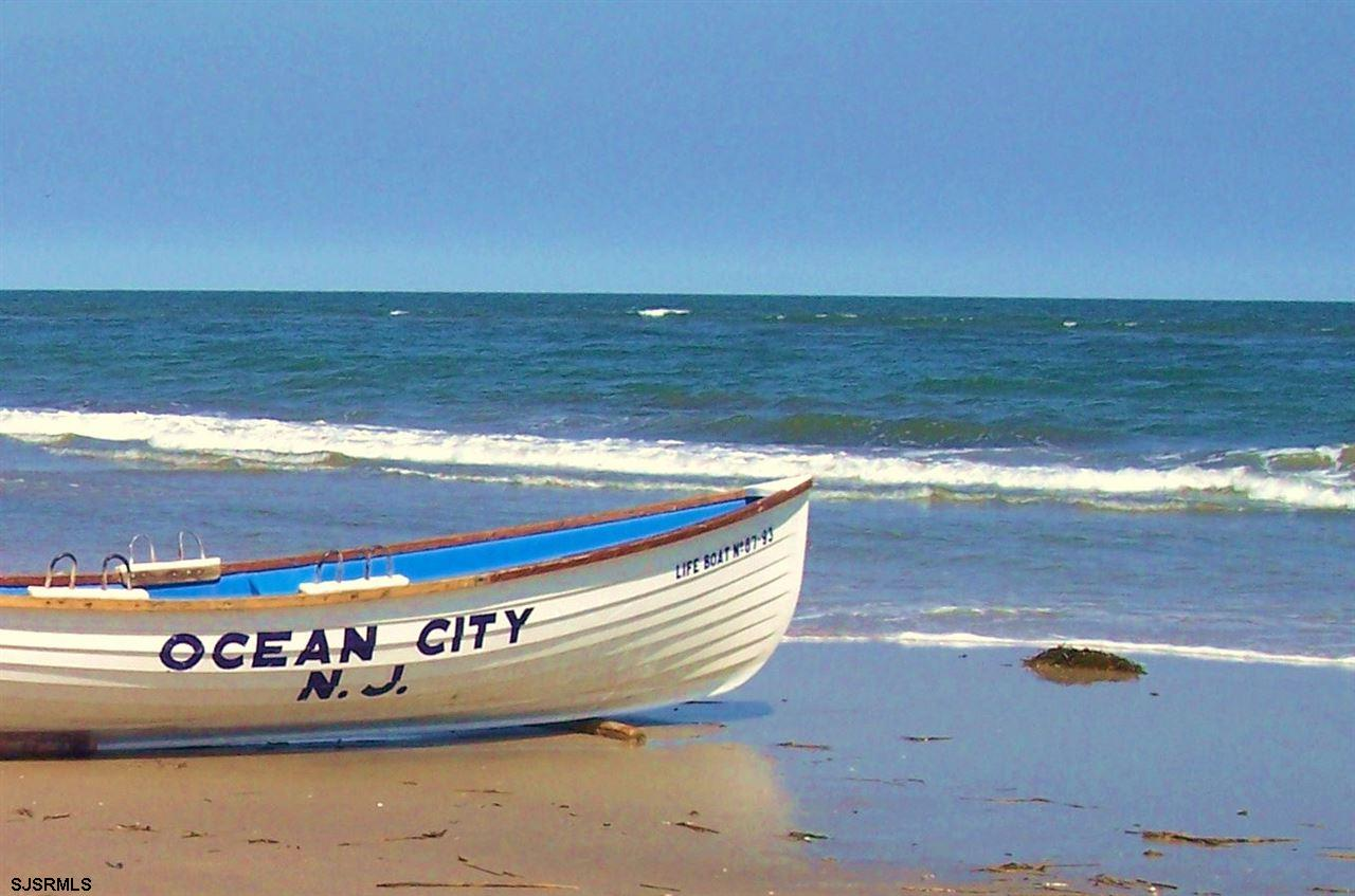 1217 OCEAN AVE  #343 Avenue - Picture 13