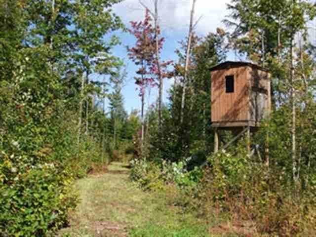 TBD Water Tower Rd, White Pine, MI 49971