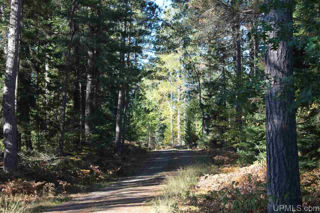 TBD Off Baraga Plains Rd, Baraga, MI 49908