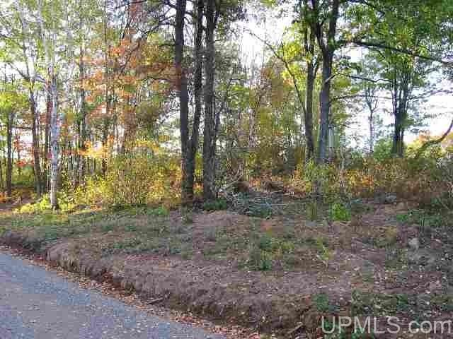 TBD Campbell Ln, Florence, WI 54121
