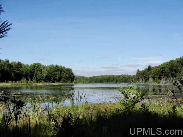 TBD Armstrong Creek Ct, Laona, WI 54541