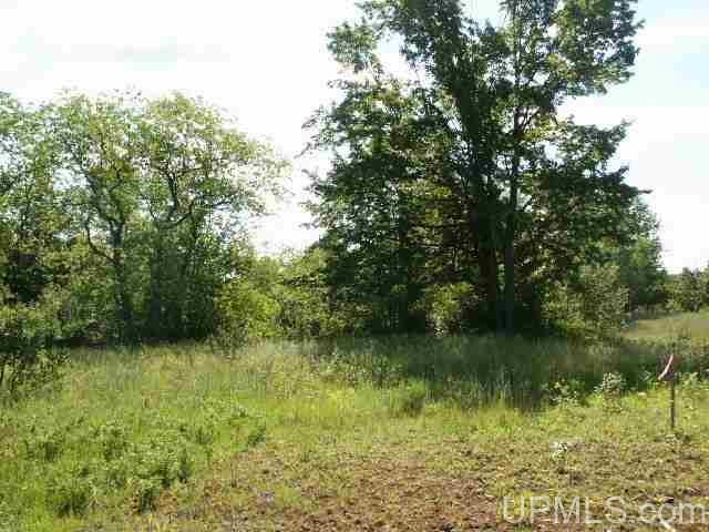 TBD Romitti Dr, Florence, WI 54121
