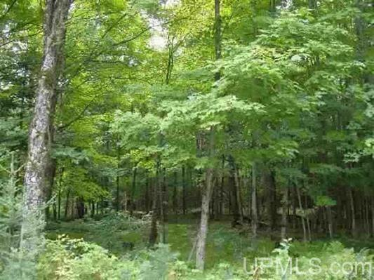 TBD Twin Rivers Rd, Fence, WI 54120