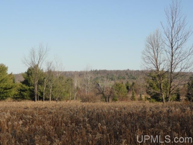 TBD Section Line Rd, Trout Creek, MI 49967