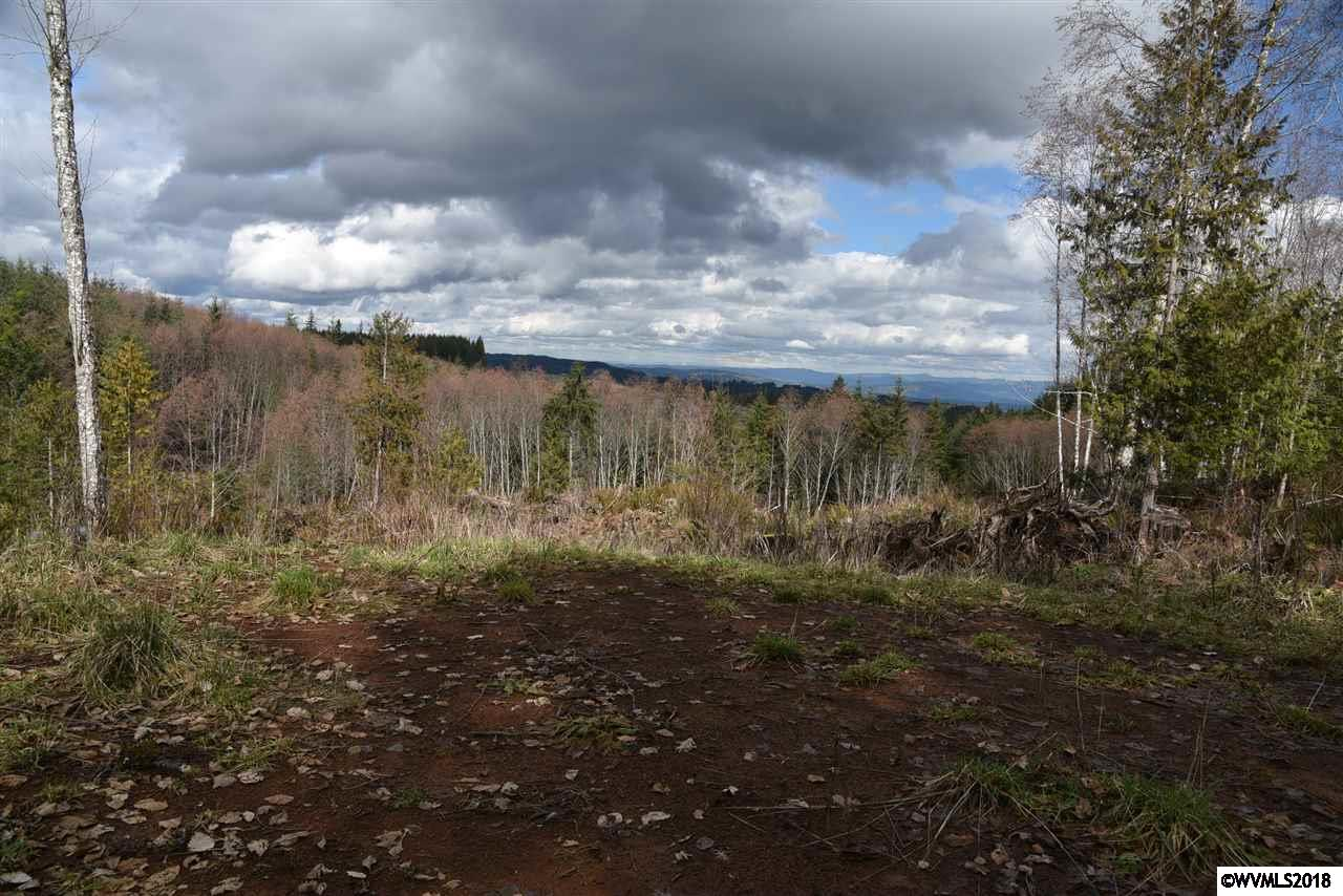25000 Pittsburg Rd, St Helens, Oregon, ,Land (1+ Acre),For sale,25000 Pittsburg Rd,732415