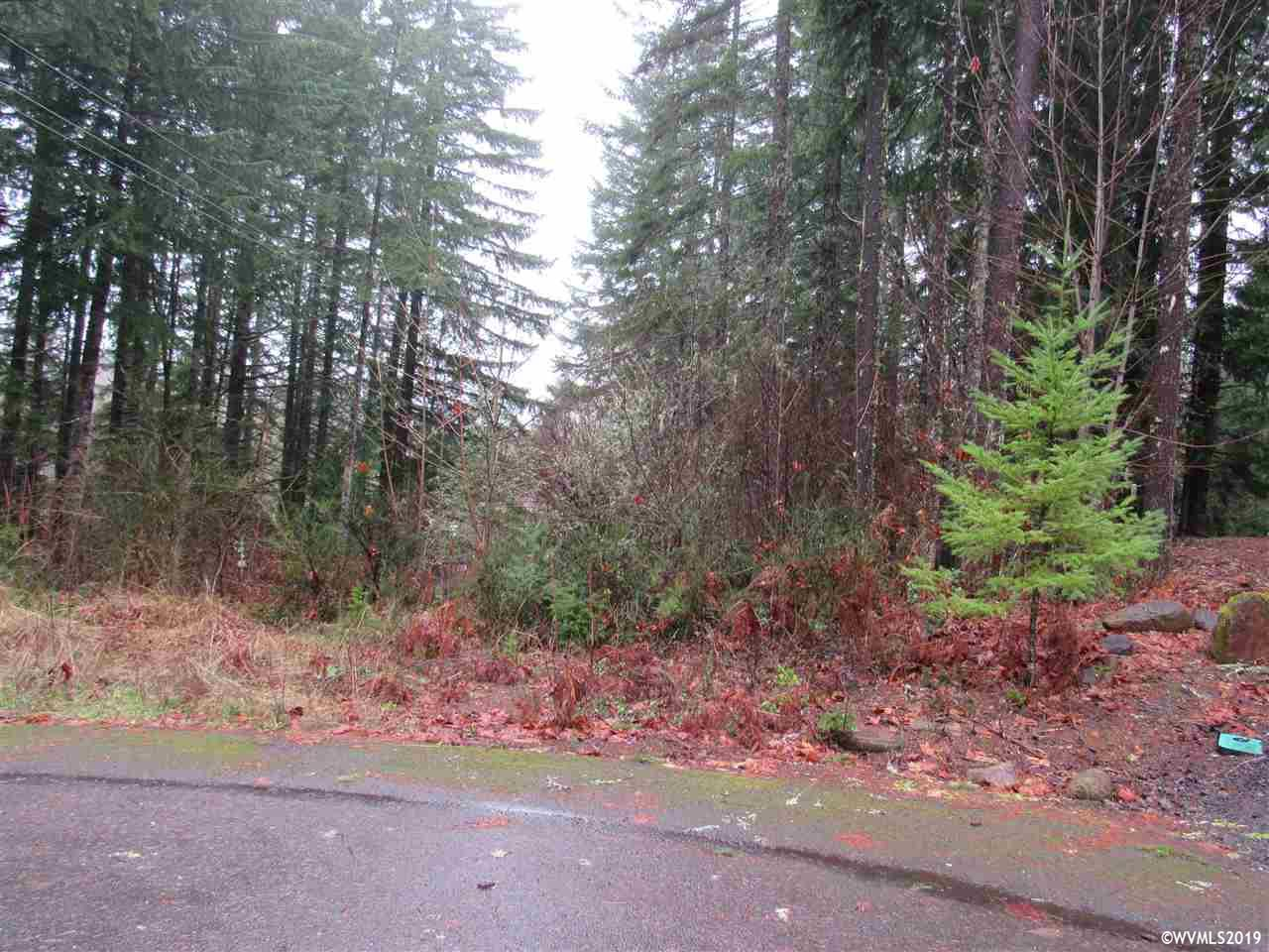 110 Lake Ct, Detroit, Oregon 97342, ,Lot (under 1 Acre),For sale,110 Lake Ct,743674