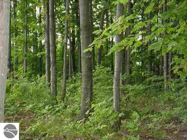 Property for sale at N Our Majestic Trail, Suttons Bay,  MI 49682