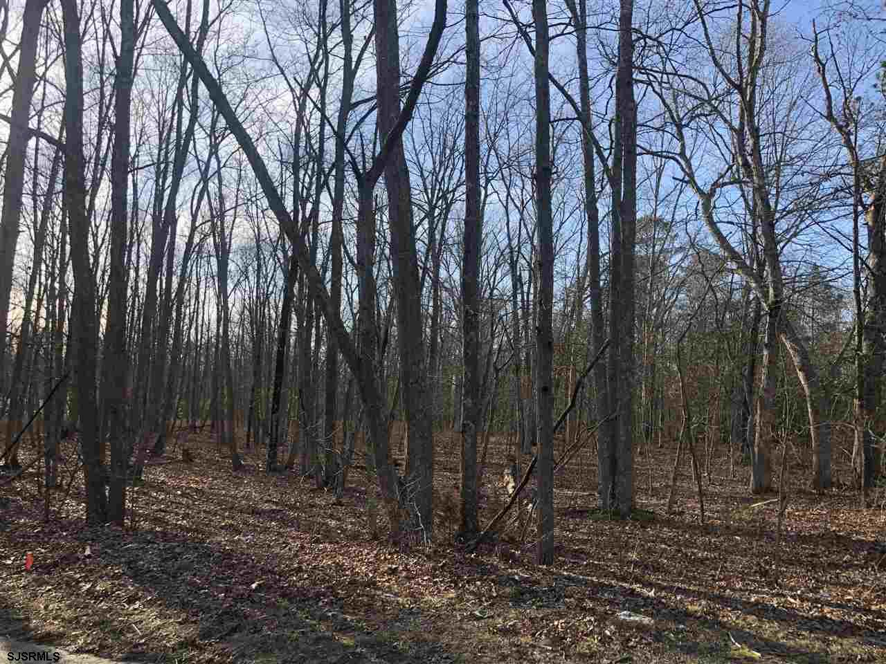 "Large Beautiful wooded lot. Nestled between two single family homes. Nice quiet street. This lot is a few blocks from 'Funny Farm Rescue"". Buildable questions and possibilities should be inquired through the township and Pinelands. Not through the seller. Seller shall make no warrants. There is no Yard sign. The land is sandwiched in between block 501, lot 1 (6427 Jefferson) and block 501 lot 3 (6455 Jefferson)"