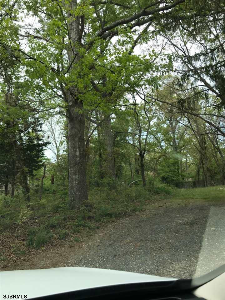 456 Spruce Avenue - Picture 8