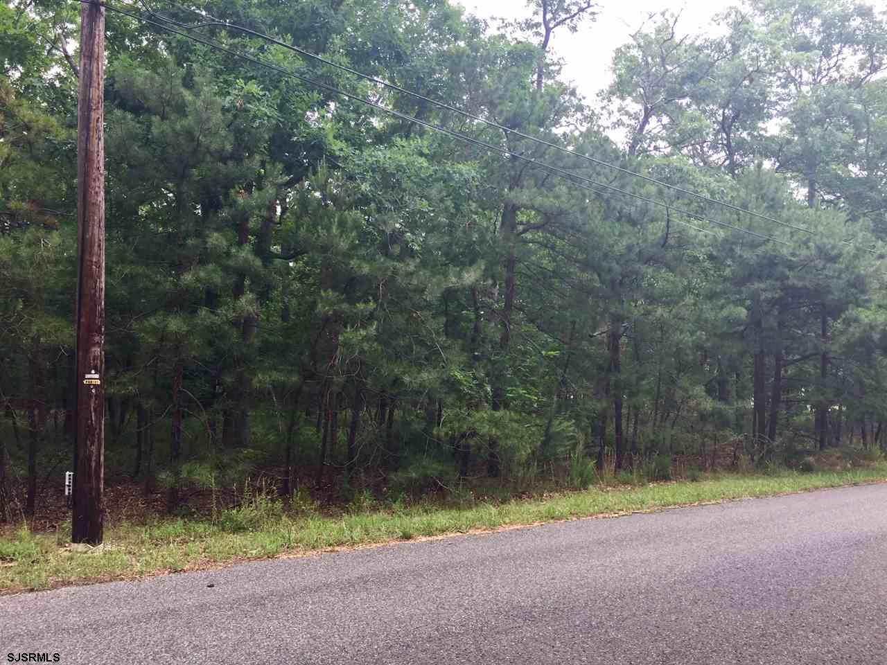 Buildable lot in quiet residential setting. Well on site. Pinelands and zoning use approved.