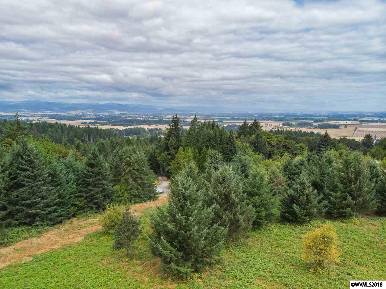 Photo of SE Hillview (Lot #59) Dr