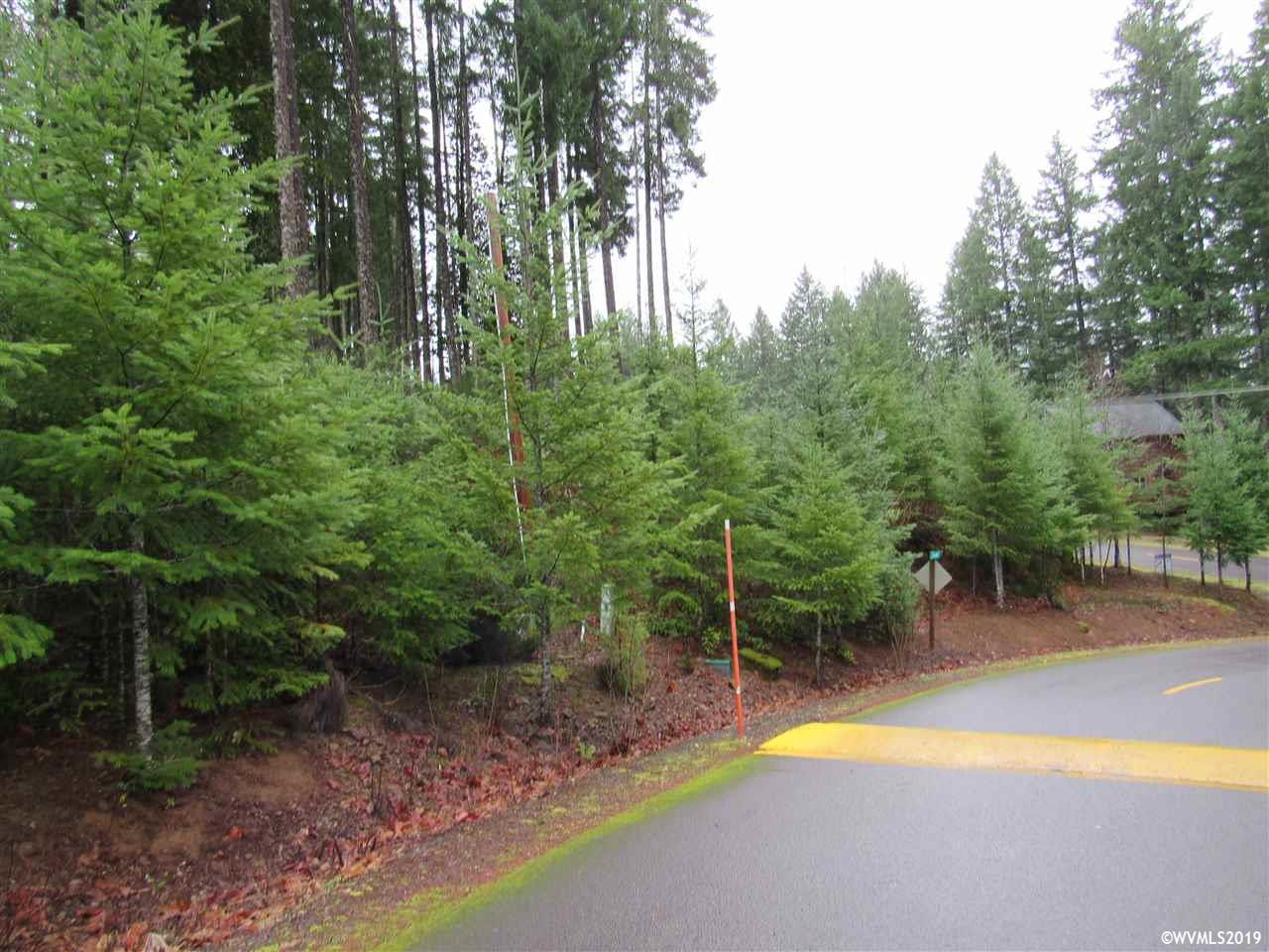 290 Scott Av, Detroit, Oregon 97342, ,Lot (under 1 Acre),For sale,290 Scott Av,743675